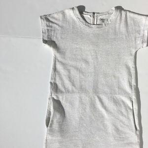 Madewell Dresses - Madewell Sketchpoint Shift Dress w/Pockets sz XS